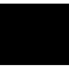 S 407 RUS