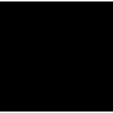 S 408 RUS