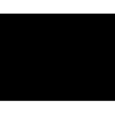 S 417 RUS